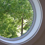 Sahalie Falls Bedroom in the treetops.