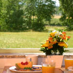 Enjoy your breakfast looking over the meadow.
